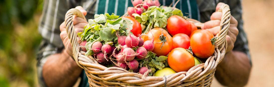 Frutas y verduras feas, la belleza y el gusto están en el interior